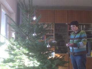 [Bild:http://twitpic.com/vvmg – Baum…]
