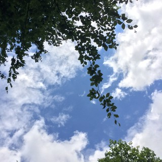 [Bild:Liegen und in Wolken gucken]